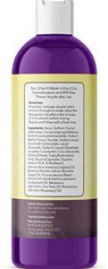 Maple Holistics Sage Shampoo with Jojoba Argan and Tea Tree Oil